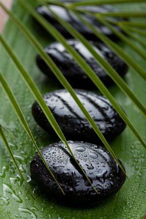 tranquil: black spa stones and leaves  Stock Photo