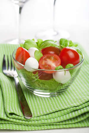 caprese salad Stock Photo - 8080803