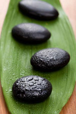 oriental massage: black spa stones over leaf  Stock Photo