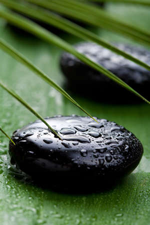 alternative wellness: black spa stones and leaves