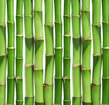 bamboo background isolated Stock Photo