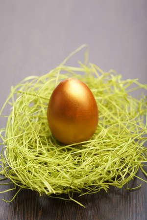 golden easter egg in nest Stock Photo - 9151640