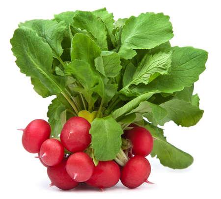 fresh radish isolated photo