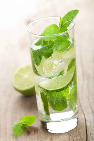 fresh mojito cocktail Stock Photo - 9827895