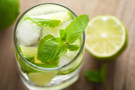 fresh mojito cocktail Stock Photo - 9828039