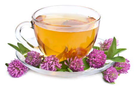 tannin: herbal tea and clover flowers isolated