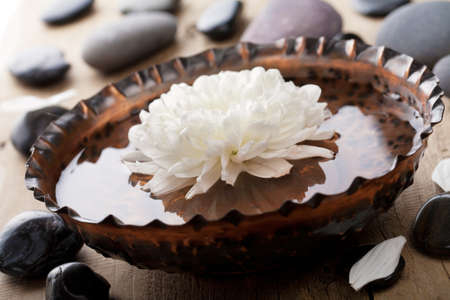 stone bowl: spa and beauty Stock Photo