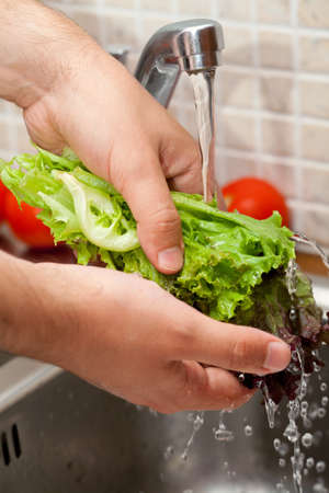 man washing salad leaves photo