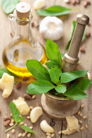 ingredients for pesto sauce Stock Photo - 11037802