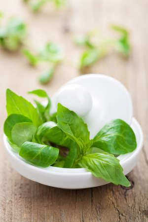 mortar with fresh herbs  photo