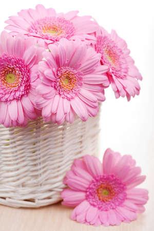 daisies in vase photo