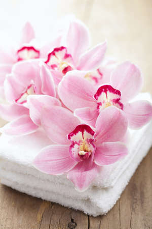 orchid flowers and towels for spa Stock Photo