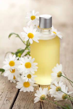 essential oil and camomile flowers photo