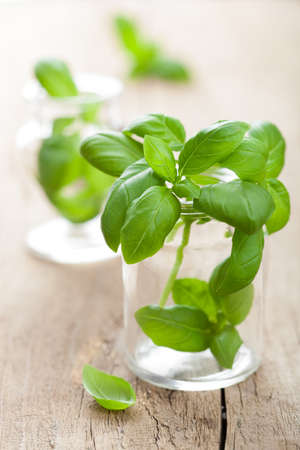 cooking utensils: basil in glass