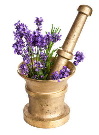 herb medicine: mortar with lavender isolated Stock Photo