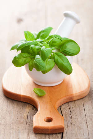 basil in mortar  photo