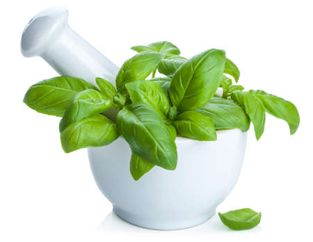 mortar and pestle medicine: basil in mortar isolated