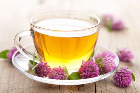 herbal tea and clover flowers  Stock Photo