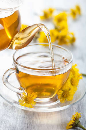 herbal tea with coltsfoot flowers photo
