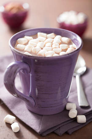 warm drink: cocoa with small marshmallows