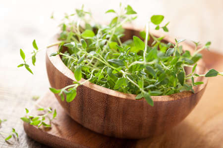 tomillo: hierba de tomillo fresco en un tazón de madera