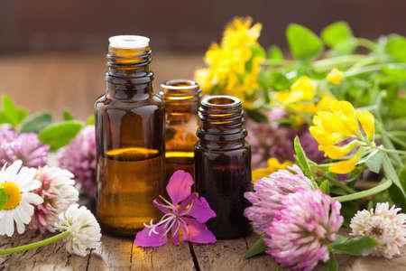 aceites: aceites esenciales y flores hierbas m�dicas Foto de archivo