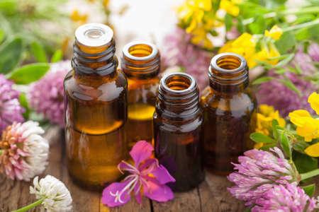 aceites: aceites esenciales y flores hierbas medicinales Foto de archivo