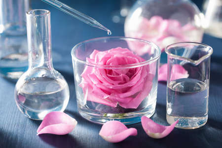alchemy and aromatherapy with rose flowers and chemical flasks Stock fotó