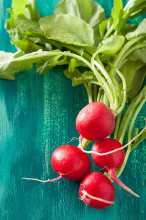 green vegetables: fresh radish with leaves over green background