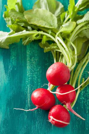 verduras verdes: rábano fresco con hojas sobre fondo verde