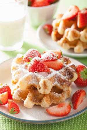 icing: belgian waffles with icing sugar and strawberry