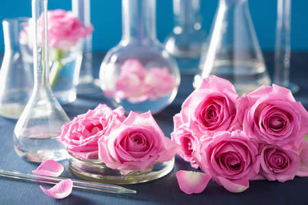 alquimia: alchemy and aromatherapy set with rose flowers and chemical flasks Foto de archivo