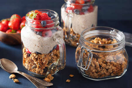 oats: homemade granola and chia seed pudding with berry healthy breakfast