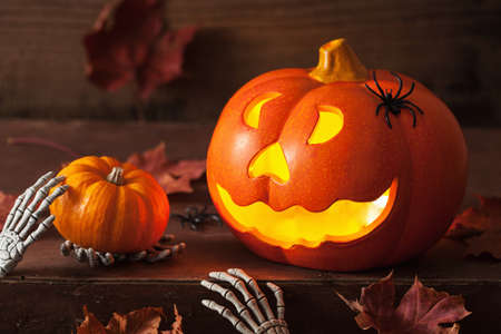 halloween Jack O Lantern pumpkin spiders leaves