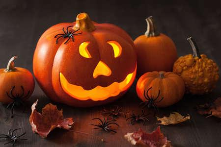jack o lantern: halloween Jack O Lantern pumpkin spiders leaves