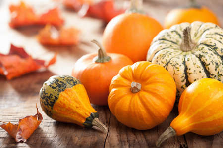 pumpkin leaves: decorative pumpkins and autumn leaves for halloween Stock Photo