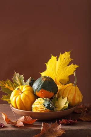 calabazas de halloween: calabazas decorativas y las hojas de otoño para Halloween