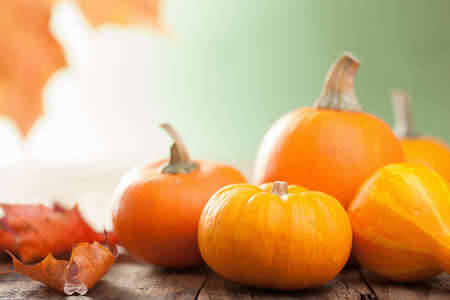 faded: decorative pumpkins and autumn leaves for halloween Stock Photo