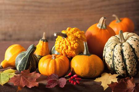 calabazas de halloween: decorative pumpkins and autumn leaves for halloween Foto de archivo