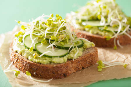 sprout: healthy rye bread with avocado cucumber radish sprouts