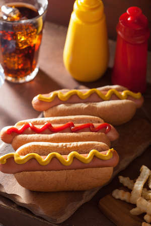 hot drink: grilled hot dogs with mustard ketchup and french fries
