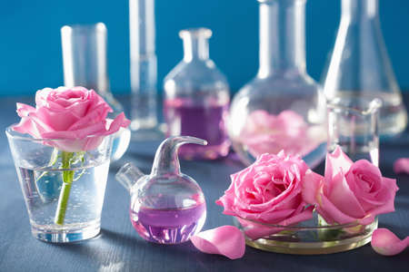 quimica organica: alchemy and aromatherapy set with rose flowers and chemical flasks Foto de archivo