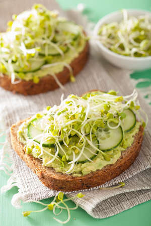 food dressing: healthy rye bread with avocado cucumber radish sprouts