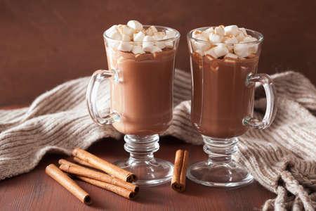 Chocolat chaud avec des mini guimauves boisson cannelle hiver Banque d'images - 49023384