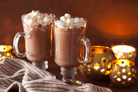 hot chocolate with mini marshmallows cinnamon winter drink