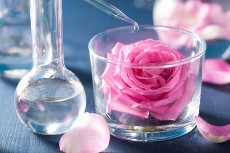 destilacion: la alquimia y la aromaterapia con flores de rosa y frascos de químicos Foto de archivo