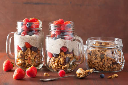 healthy snack: homemade granola and chia seed pudding with berry healthy breakfast