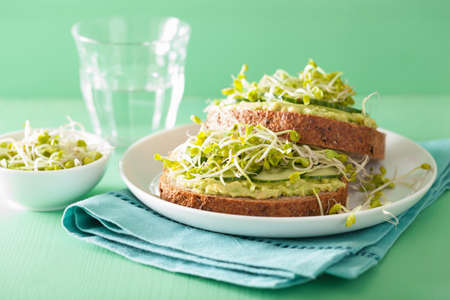 sprouts: healthy avocado toast with cucumber radish sprouts Stock Photo