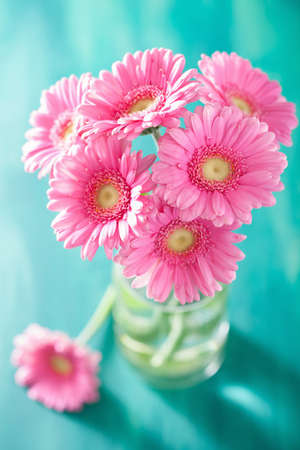 closeup of pink daisy with: beautiful pink gerbera flowers bouquet in vase Stock Photo