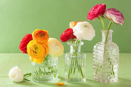 ramo de flores: coloridas flores ranúnculo en florero sobre fondo verde Foto de archivo
